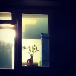 Olivers Groot in his bedroom window