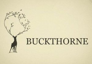 If you are looking for hard landscaping, Oliver and I are up and running. Check out @buckthornewoodworks or www.buckthorne.co.uk