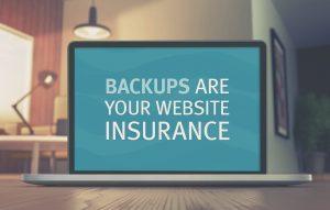 website insurance